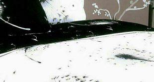 روتختی سیاه سفید